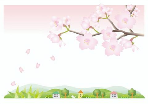 櫻花的風景