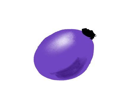 一顆葡萄的插圖