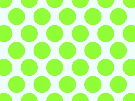 Polka dot_Large size_4