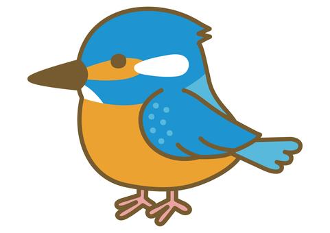 一隻可愛的翠鳥的插圖