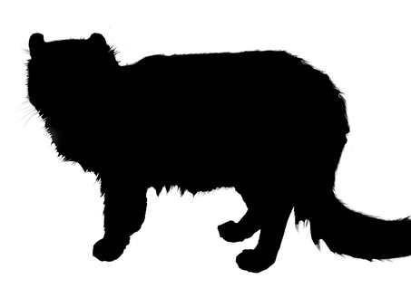 貓(剪影)