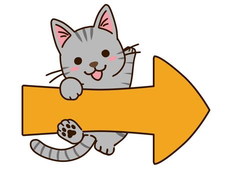 Right arrow and Sabatra cat