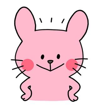 Rabbit_Ibaru