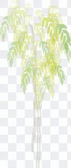 Illustration ornamental plant fashionable green tropical plant