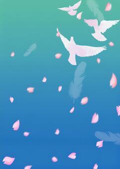 비둘기가 날고 푸른 하늘 벚꽃 6