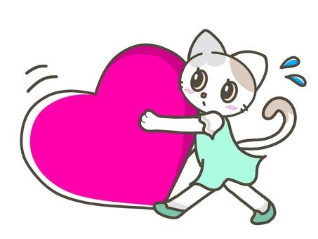 一隻帶著大心臟的貓