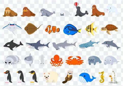 水族館・海の生き物セット