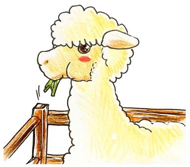 Mogumogu alpaca