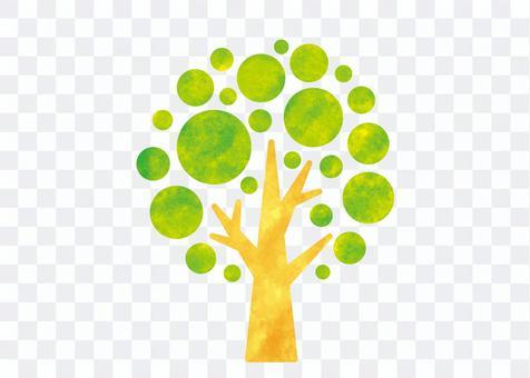 나무 02_16