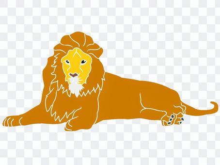 令人印象深刻的獅子