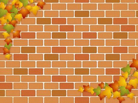 磚牆和常春藤(秋葉)