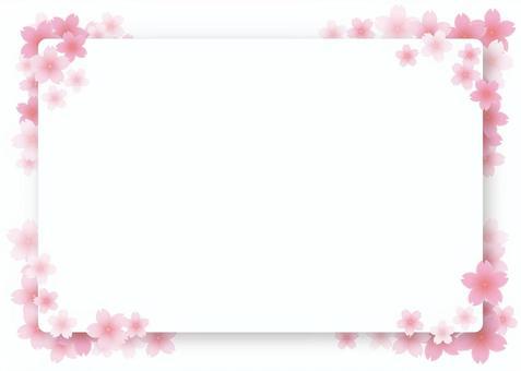 櫻花框架,背景,A4水平,與油漆