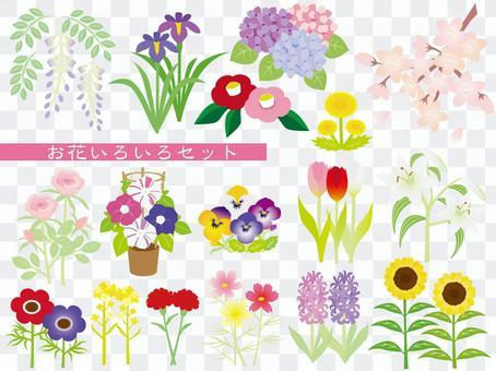 꽃 여러 세트