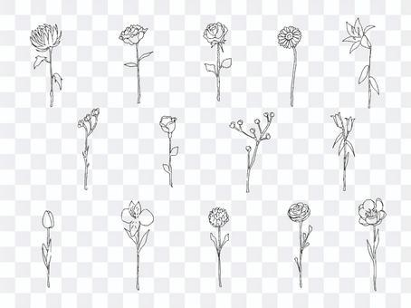 Illustration set of a single flower