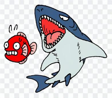 魚被鯊魚追趕
