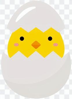 蛋 -  03(小雞)