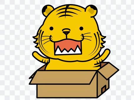 盒子裡的老虎