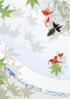 藍色秋天的葉子_縱向大小在魚缸裡