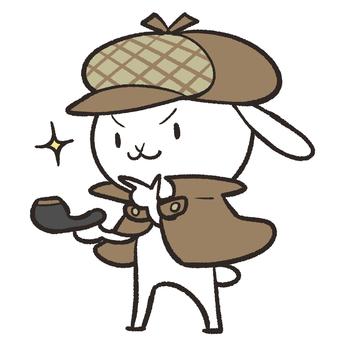 Detective rabbit