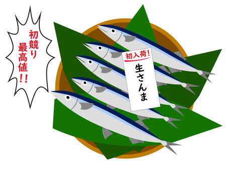 First auction of fish raw saury autumn sword fish