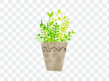Plant plant ver 01