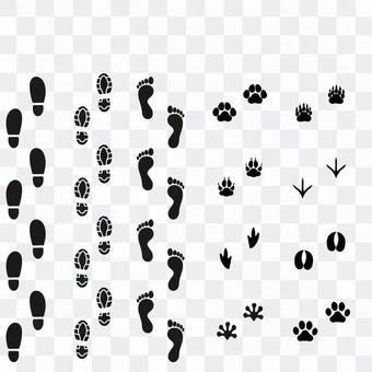 Footprint brush