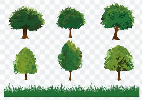 樹和草的插圖