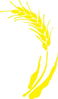 麦 シルエット 素材