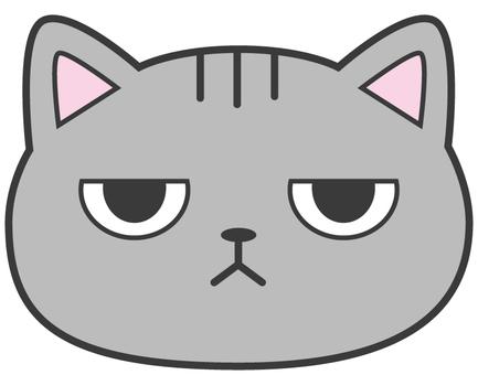 貓_美國短毛貓_吉託的眼睛