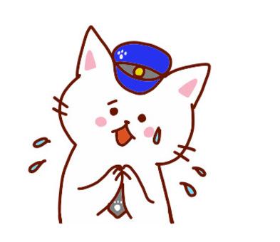 貓(對不起)