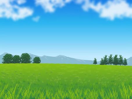 新鮮的天空和草地背景02