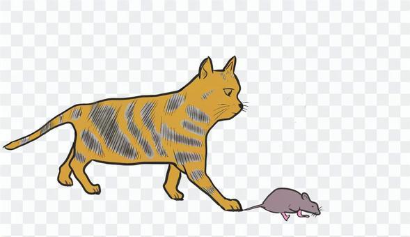 ネコがネズミを捕まえる