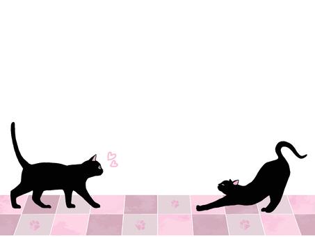 Black cat meeting date frame