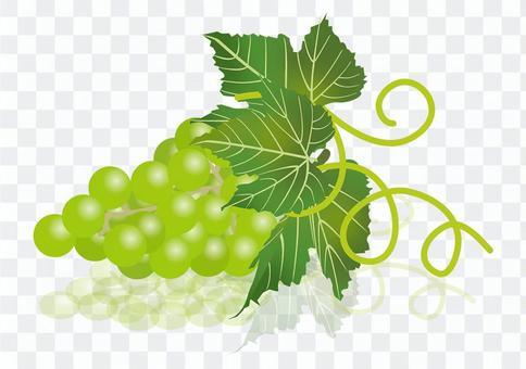 美味的葡萄11