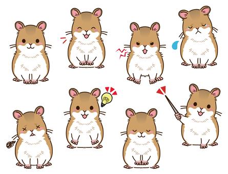 倉鼠姿勢集合