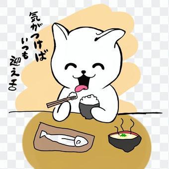 貓+熊08