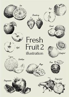 Fresh fruit illustration 2