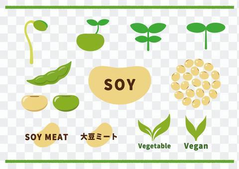 大豆 セット