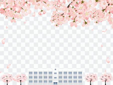 櫻花和學校大樓框架