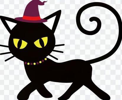 Halloween cat black cat