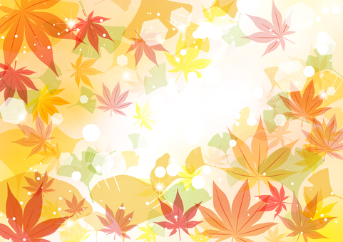 普通版楓葉銀杏秋葉背景