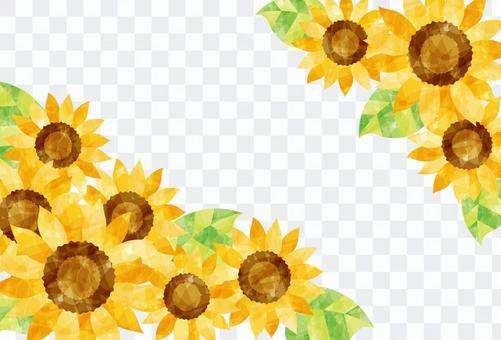 花框架/向日葵