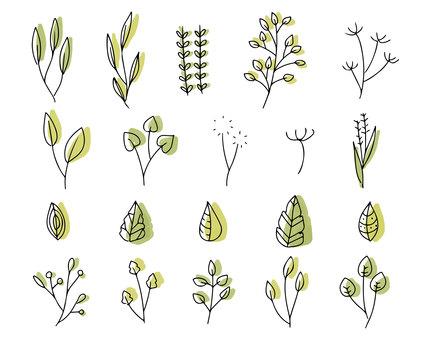 Line art plant motif set Leaf illustration