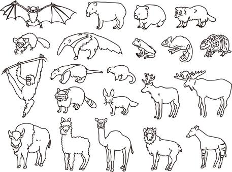 Various animals 3
