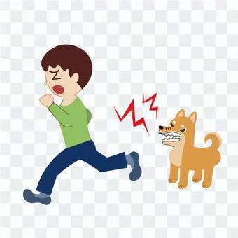 一個害怕吠叫的狗而逃跑的男孩