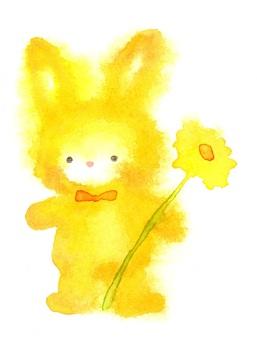 兔子與花黃色透明水彩手繪流血
