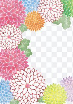 Chrysanthemum crest