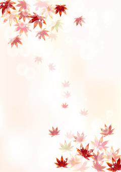 가을 무늬 단풍 8