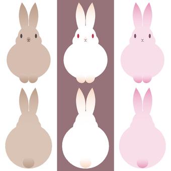 三色兔一套