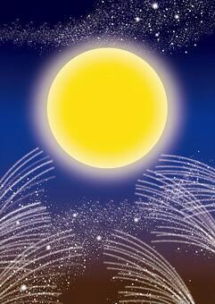 Moon and Susuki 3